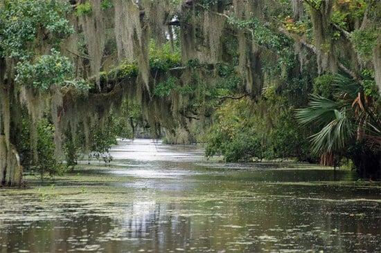 Pantano de Agua dulce.